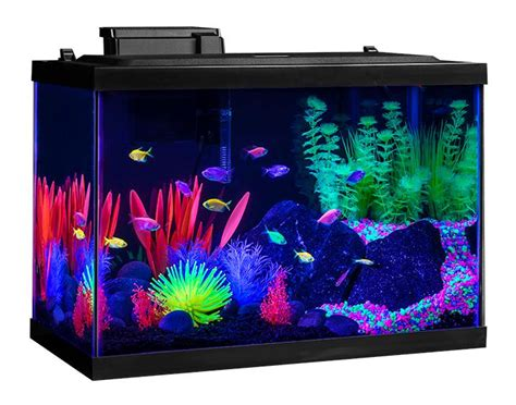 aquarium tank kit 20 gallon glow fish neon color starter led decor home office ebay