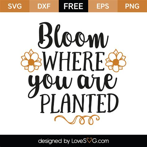 You're welcome to embed this image in your website/blog! Bloom Where You Are Planted - Lovesvg.com