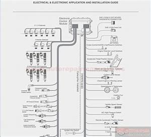 Cat 40 Pin Ecm Wiring Diagram  U2013 Vivresaville Com