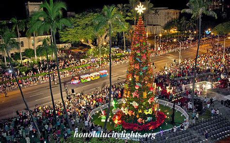 6 public christmas tree light displays worth checking out