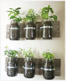 indoor kitchen garden ideas indoor herb gardens and salad walls inspiration
