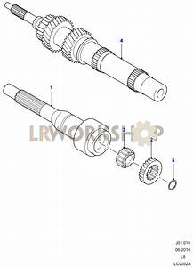 Input Shaft  Gear Sets And Bearings