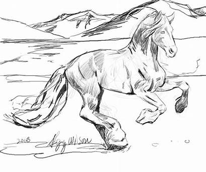 Horse Coloring Pages Herd Wild Realistic Printable