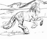 Horse Coloring Pages Herd Print Wild Realistic Printable Getcolorings sketch template
