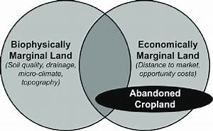 The Definition Of Abandoned Cropland Within The