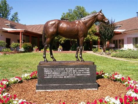 secretariat heritage foundation archives horse  man