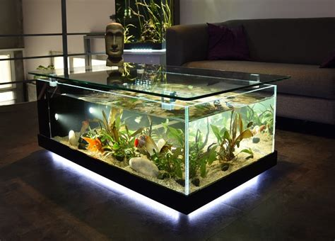 fabrication vente aquariums eau douce odyssee aquarium odyssee v 233 g 233 tale