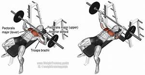 Barbell bench press exercise instructions and video ...