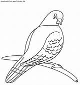 Pigeon Coloring Pages Printable Preschool Animals Animal Crafts Kindergarten Preschoolcrafts sketch template