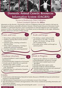 Domestic Animal Genetic Resources Information System ...