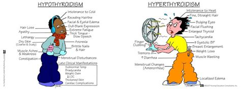 Hypothyroidism And Mood Swings by Hyperthyroidism Vs Hypothyroidism The Issues Of