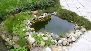 Algen Im Gartenteich : algen entfernen aus dem teich ~ Michelbontemps.com Haus und Dekorationen