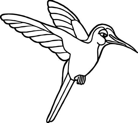 Rainforest Hummingbird Coloring Page Wecoloringpagecom