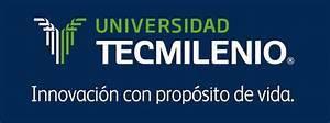 88 por ciento de egresados de Universidad Tecmilenio, con registro de empleo Educación y