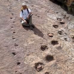 Human Footprints with Dinosaur Prints