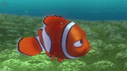 Reef Barrier Dead Pronounced Giphy Gifs Algae