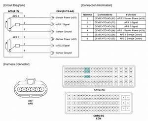 Kia Sportage  Accelerator Position Sensor  Aps   Schematic