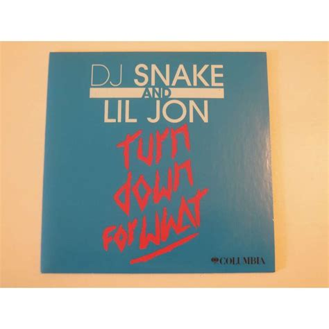 dj snake and lil jon turn down for what promo 1 track de dj snake and lil jon