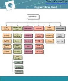 Organizational Hierarchy Chart Example