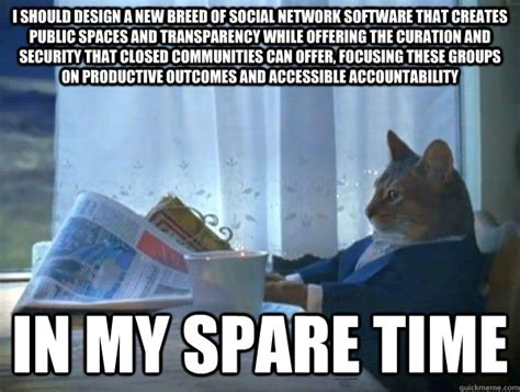 Newspaper Cat Meme - i should design a new breed of social network software that creates public spaces and