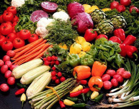 cuisine eco the eco diet a sneak peek ecofriend