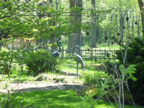 geneva il japanese garden in the fabyan forest preserve
