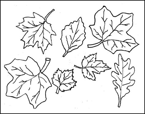 cut out template leaf template printable leaf templates free premium templates