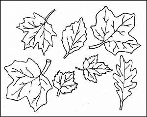 leaf template printable leaf templates free premium With leaf cut outs templates