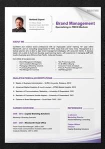 Professional CV Resume Templates