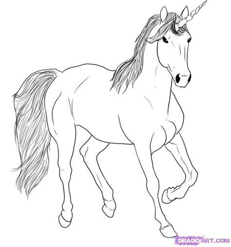 draw  sky unicorn step  unicorns