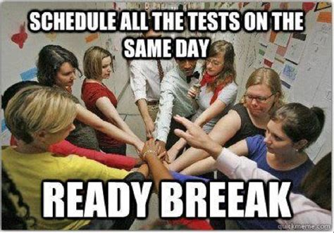 Teacher Spring Break Meme - college memes final exams edition guest starring effie trinket the rock polar bears pawn