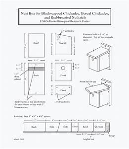 Alaska Science Center - Beak Deformities - Nest Box Plans