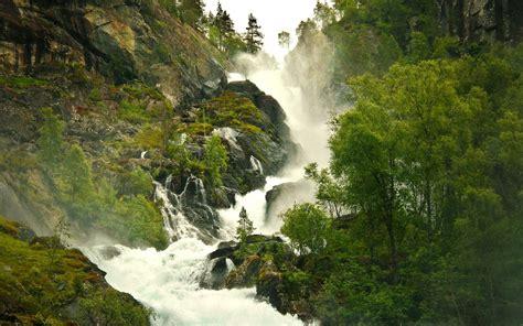 wallpaper trees landscape forest waterfall rock