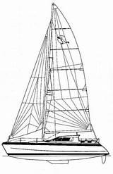 Catamaran Drawing Getdrawings sketch template
