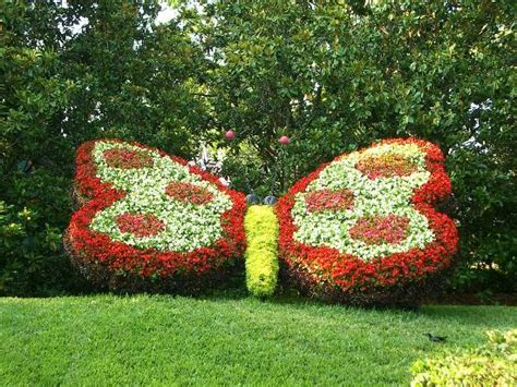 Butterfly Garden Art  Picture Of Busch Gardens, Tampa
