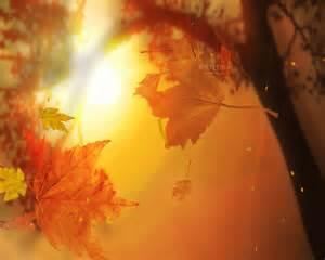 Desktop Fall Screensaver Autumn Leaves