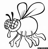 Fly Coloring Pages Drawing Animals Insect Cartoon Sheet Shoo Swatter Animal Printable Sheets Bug Colors Different Clipart Bother Swat Preschool sketch template