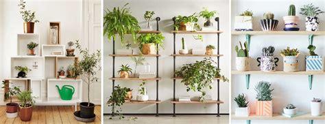 ternyata manfaat merawat tanaman didalam ruangan
