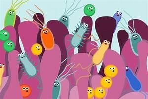 Gut flora, alkalinity and intestinal parasities – Eeek ...