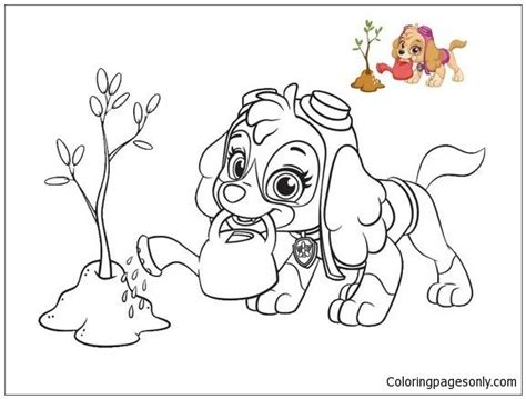 Skye From Paw Patrol 2 Coloring Page Dog coloring book