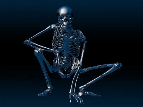 Skeleton Animated Wallpaper - 3d skeleton wallpaper wallpapersafari