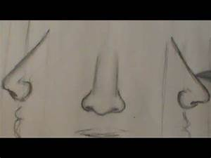 Drawing Lessons How To Draw A Human Face Nose