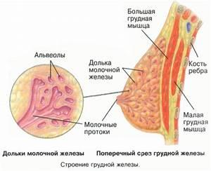 Способы лечения аденомы гипофиза