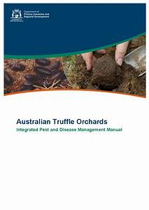 Australian Truffle Orchards Pest And Disease Field Guide