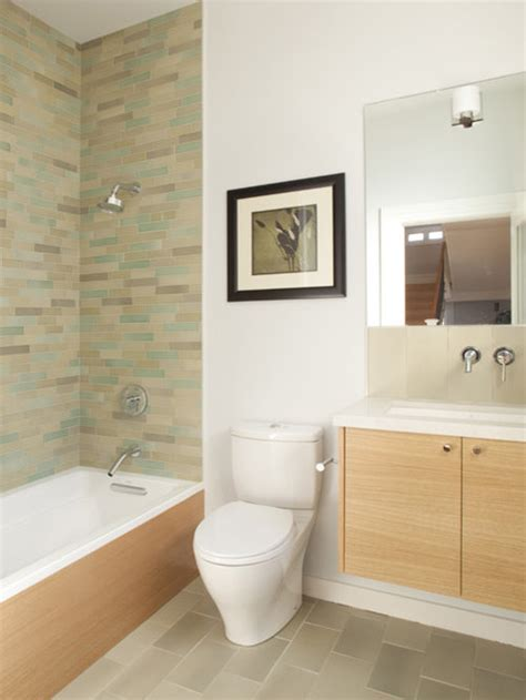 skirted toilet home design ideas pictures remodel  decor
