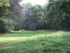 Melwood Local Nature Reserve - Wikipedia