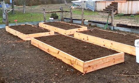 raised garden beds plans garden raised beds smalltowndjs