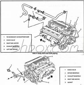 95 Lt1 Engine Diagram
