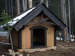 Backyard pet structures backyard chicken coops and dog for Large custom dog houses