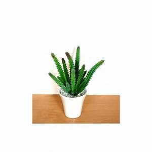 Plante Grasse Artificielle : plante grasse artificielle tavaresia en pot plantes ~ Teatrodelosmanantiales.com Idées de Décoration